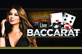 Live Casino Site
